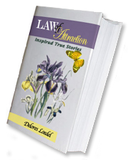 C. Laurin Book Covers - Laws of Attraction